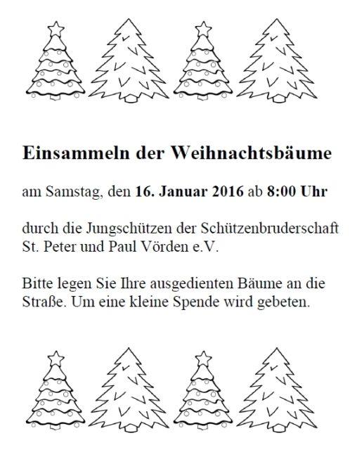 tannenbäume_einsammeln